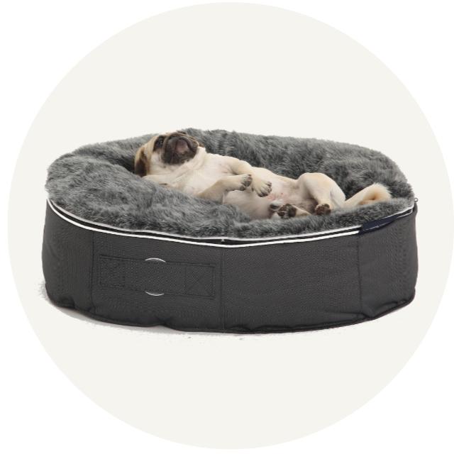 ふかふかのグレーのぺットベッドにパグ犬が仰向けになりながら寛いでいる